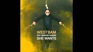 Westbam feat Bernard Sumner - She Wants
