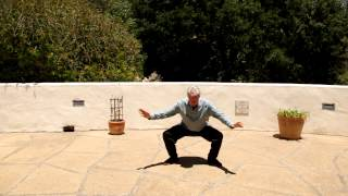 Tai Chi Easy 5 Movements