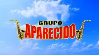 Grupo Aparecido- Guerita de Pelo Chino [Audio Estudio]