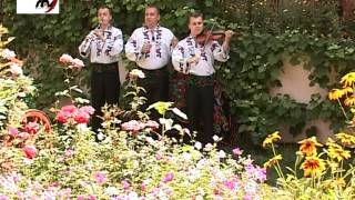 Fraţii Reuţ - Lângă badea Niculai 2012