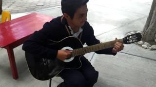 Proximo guitarrista de panda