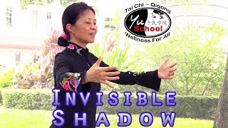 The Invisible Shadow: Secret of Tai Chi Training