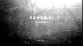What does dummador mean
