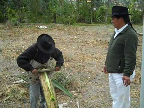 Agave Fibers used for shoes in Ecuador