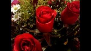 Daniel Ramon - Romance Rosa
