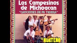 LOS CAMPESINOS DE MICHOACAN   CLAVEL DE PRIMAVERA