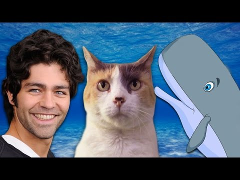 Creationist Cat meets Lonely Whale (with Adrian Grenier!)