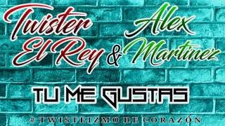Tu Me Gustas - Twister El Rey Ft Alex Martinez [DESCARGAR] [Original]