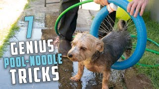 7 Genius Pool Noodle Tricks You Should Know