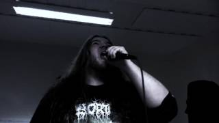 Infant Annihilator Motherless Miscarriage (vocal cover)