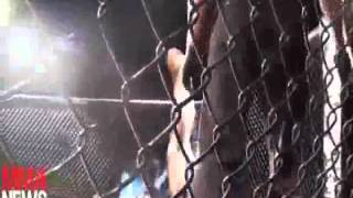"""Rowdy"" Ronda Rousey Highlight 2012"
