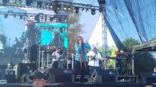 Reggae live Festival 2017 JAH NATTOH