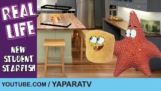SpongeBob Squarepants in Real Life 4