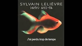Sylvain Lelièvre - J'ai perdu trop de temps