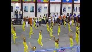 Sambòdromo & Desfiles das Escolas de Samba Mirins 4 Marz 2014