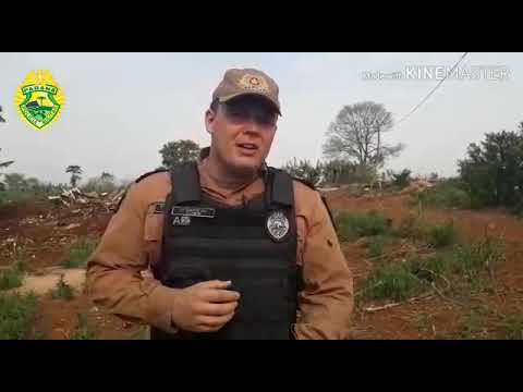 Operação Policial cumpre determinação de reintegração de posse no município de Roncador