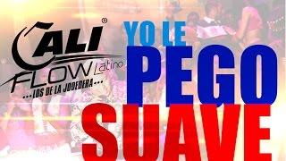YO LE PEGO SUAVE ML2, GOLDEN FT CALI FLOW LATINO VIDEO OFICIAL 2014 - SALSA CHOKE