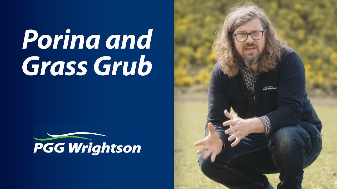 Porina and Grass Grub | PGG Wrightson Tech Tips