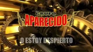 Que Bonita Chaparrita- Grupo Aparecido 2017 (Lyrics)