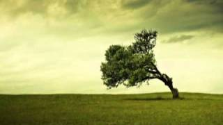 Nicu Alifantis - Sa recunoastem totusi