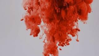 The Kudu feat. Mechi Pieretti - True Colors (Lyric video)