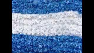 Quiero ver florecer a mi Bandera!!  Argentina