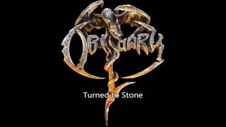 Obituary - Turned to Stone Guitar Solo Cover