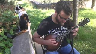 Joe Siemoneit plays the Mandolin (feat. CAT)