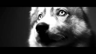 Nusky - Husky (Clip Officiel)