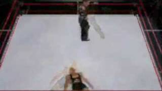 Tribute Hardy Boys ( Smackdown Vs Raw 2009 NDS )