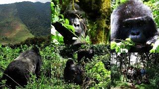 32. ΟΥΓΚΑΝΤΑ ΚΟΝΓΚΟ ΡΟΥΑΝΤΑ - UGANDA CONGO RWANDA