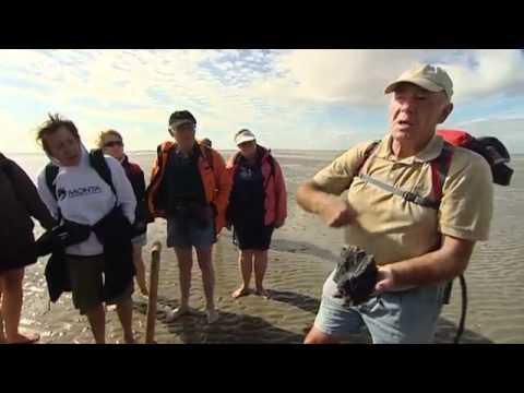 Wattenmeer – Erholung im Rhythmus der Natur | UNESCO Welterbe