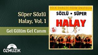 Gel Gülüm Gel Canım - Süper Sözlü Halay 1 (Official Video)