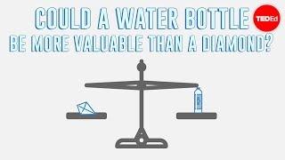 The paradox of value - Akshita Agarwal width=