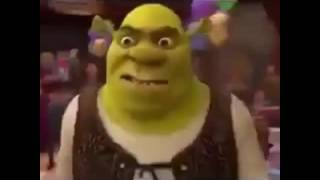 SHREK DO THE ROAR REMIX