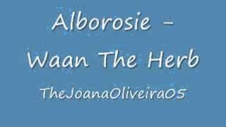 Alborosie - Waan The Herb