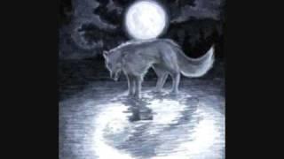 Night of the Wolf.wmv