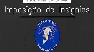Dolphituna | Solta-se o Beijo - Ala dos Namorados