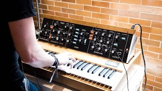 Minimoog Model D Reissue 2016 First Sounds! (Raw Footage)