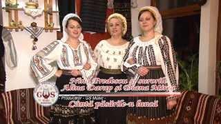 Nina Predescu şi surorile Alina Darap si Diana Mirea-Cântă păsările-n luncă(Official Video)NOU