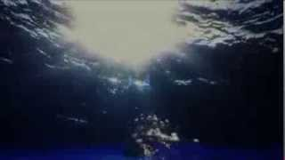 Elvis Presley -Always On My Mind (Remastered Version) (siempre en mi mente)-Sub Español - HD