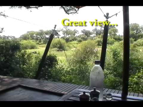 J3TVideo Ngala Tented Camp Safari.avi