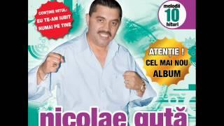 Nicolae Guta - Straine, straine (Audio oficial)