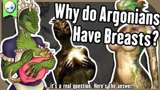 Why do Argonians have Breasts? The Science and Lore!  |  Gnoggin