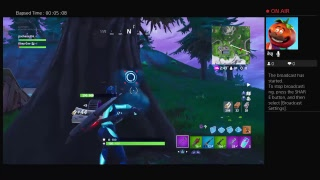 Fortnight duos with Gavin the Bot