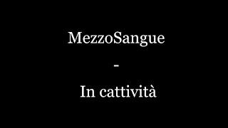MezzoSangue - In Cattività (TESTO)