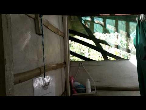 09.02.2011 – Sabalos Lodge, Nicaragua