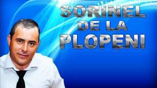 SORINEL DE LA PLOPENI   HORA INSTRUMENTALA LA ACORDEON