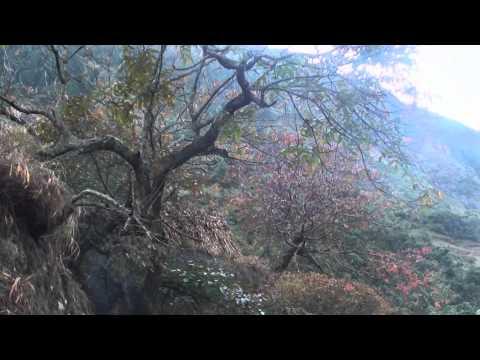Trekking around Manaslu Nepal part 2.wmv
