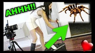 HUGE SPIDER ATTACK!!!